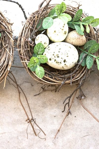 Nests with eggs and greenery