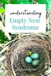 A bird nest with turquoise eggs